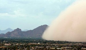 Clean Up the Mess the Monsoon Left on Your Windows